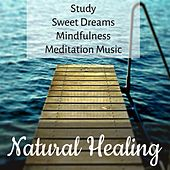 Natural Healing - Study Sweet Dreams Mindfulness Meditation Music to Manage Stress with Sounds of Nature and Instrumental by Various Artists
