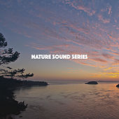Nature Sound Series by Various Artists