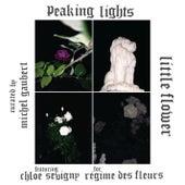Little Flower by Peaking Lights