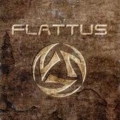 Flattus by Flattus