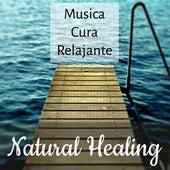 Natural Healing - Musica Yoga Cura Relajante para Desarrollo de la Mente Reducir la Ansiedad y Sanar el Alma con Sonidos de la Naturaleza Instrumentales de Meditación by Various Artists
