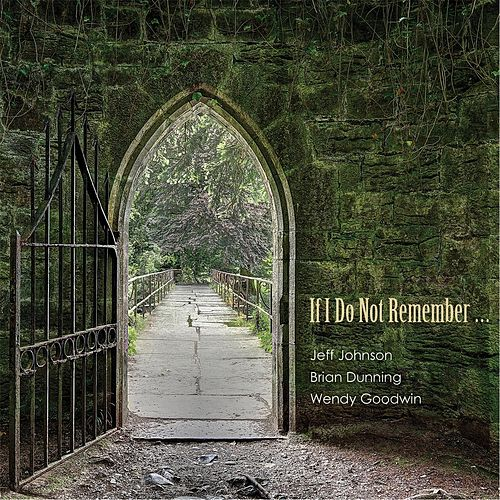 If I Do Not Remember... by Brian Dunning