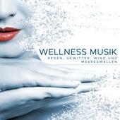 Wellness Musik: Regen, Gewitter, Wind und Meereswellen von Various Artists