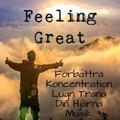 Feeling Great - Förbättra Koncentration Lugn Träna Din Hjärna Musik med Instrumental New Age Meditativ Ljud by Soothing Music Ensamble