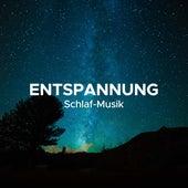 Entspannung (Schlaf-Musik) von Various Artists