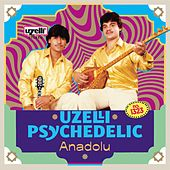 Uzelli Psychedelic Anadolu by Various Artists