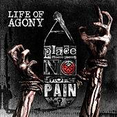 A Place Where There's No More Pain de Life Of Agony