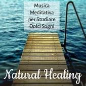 Natural Healing - Musica Meditativa per Studiare Dolci Sogni Tecniche di Meditazione per Gestire lo Stress con Suoni della Natura Strumentali Rilassanti by Various Artists