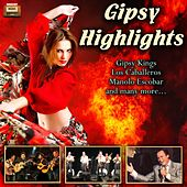 Gipsy Highlights de Various Artists