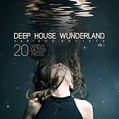 Deep House Wunderland, Vol. 1 (20 Groovy Master Pieces) by Various Artists