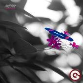 Untouchable (Addal Remix) von Jacob Bellens
