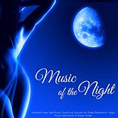 Music of the Night – Ambient New Age Music Soothing Sounds for Deep Relaxation Yoga, Moon Salutation & Deep Sleep von Various Artists