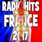 Radio Hits France 2017 de Various Artists