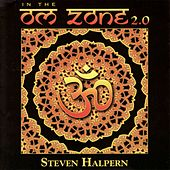 In the Om Zone 2.0 von Various Artists