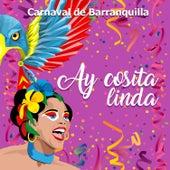 Carnaval de Barranquilla: Ay Cosita Linda de Various Artists