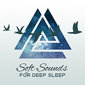 Soft Sounds for Deep Sleep – Sleep Well, Relaxing Waves of Calmness, Mind Peace, Inner Silence by Nature Sound Series