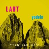 LAUT yodeln! (Fern - Nah - Weit) by Various Artists