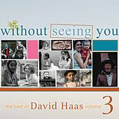 The Best of David Haas, Vol. 3: Without Seeing You by David Haas