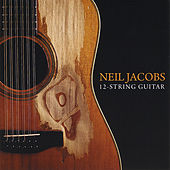 12 String Guitar by Neil Jacobs