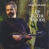Up in the Woods by John Reischman