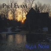Agua Noir by Paul Evans