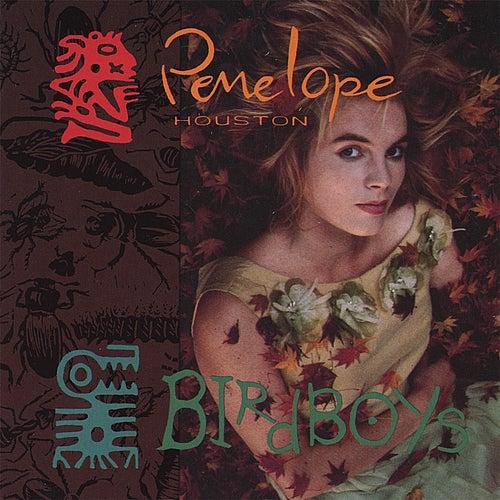 Birdboys by Penelope Houston