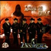 Amor De Cama by Pantera Del Norte