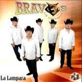 La Lampara by Bravos De Ojinaga