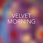 Velvet Morning de Various Artists
