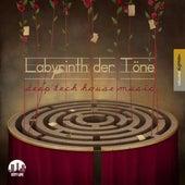 Labyrinth der Töne, Vol. 18 - Deep & Tech-House Music by Various Artists