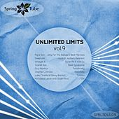 Unlimited Limits, Vol. 9 by Various Artists