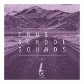 True School Sounds, Vol. 5 by Various Artists