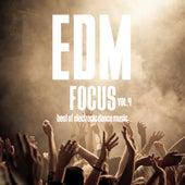 EDM Focus, Vol. 4 - Best of Electronic Dance Music de Various Artists