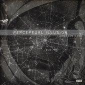 Perceptual Illusion by Housemeister