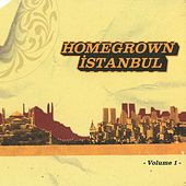 Homegrown Istanbul, Vol. 1 by Various Artists