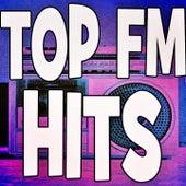 Top Fm Hits de Various Artists