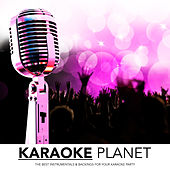Karaoke Planet - The Best Hits, Vol. 8 by Various Artists