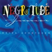 Deixa Acontecer by Negritude Júnior
