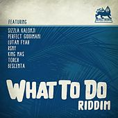 What to Do Riddim by Various Artists