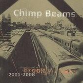 Brooklyn Days 2001-2008 by Chimp Beams