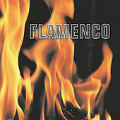 Flamenco by Various Artists