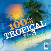 100% Tropical, Vol. 3 by Various Artists