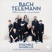 Bach & Telemann: Effervescence concertante de Ensemble Amarillis