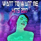 Want to Want Me Hits 2017 de Various Artists