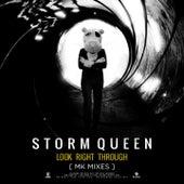 Look Right Through [Mk Mixes] di Storm Queen