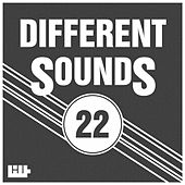 Different Sounds, Vol.22 by Various Artists