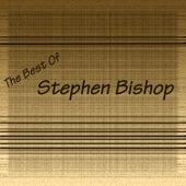 Stephen Bishop by Stephen Bishop