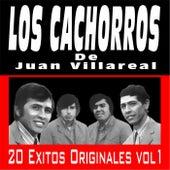 20 Exitos Originales, Vol. 1 by Los Cachorros de Juan Villarreal