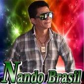 Nando Brasil de Nando Brasil