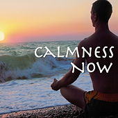 Calmness Now by Various Artists
